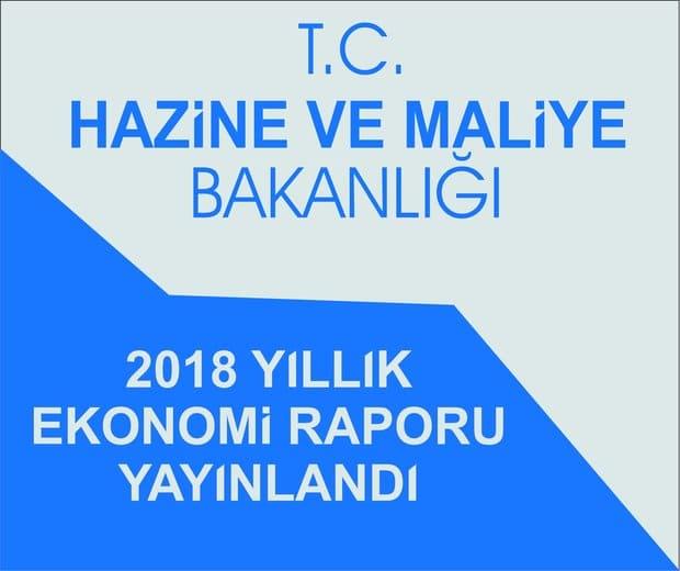 Hazine ve Maliye Bakanlığı 2018 Yıllık Ekonomik Raporu Yayımladı.
