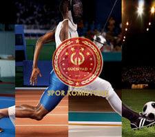 Spor Komisyonu